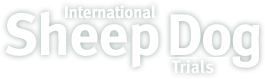 Welsh National Sheep Dog Trials